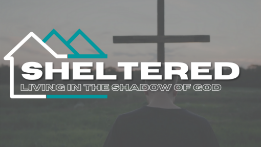Sheltered: All  You Have to Do Is Say Help